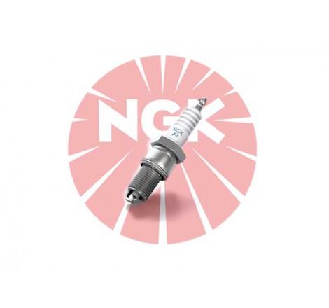 Uždegimo žvakė NGK LPG6 (1565)